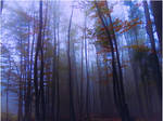 Whispering Woods III by 1Eres