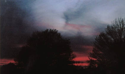 Bloodshed Sky