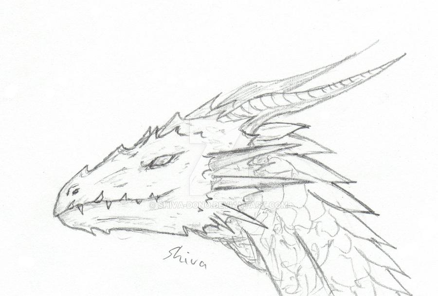 Dragon Head Sketch By Shiva Dono