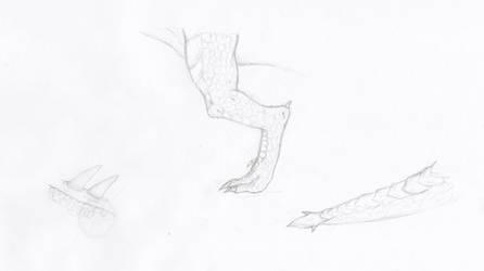 Dragon leg practise