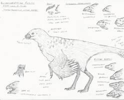 Protarchaeopteryx Infographic by RajaHarimau98