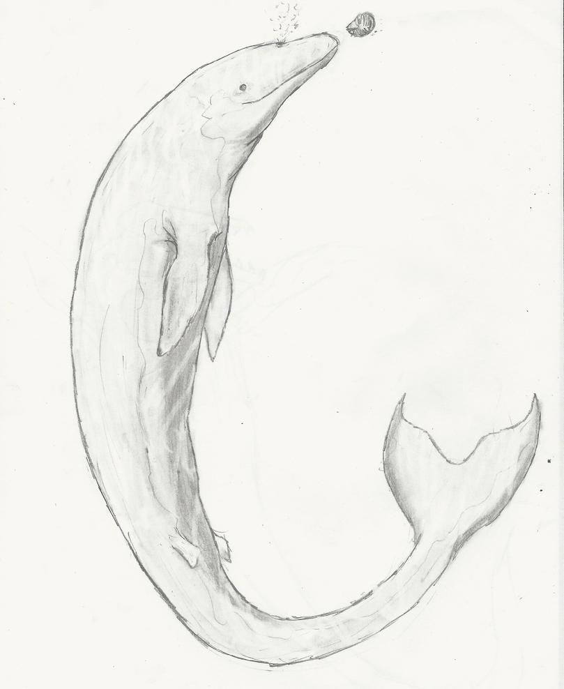 Basilosaurus, Calm for Once by RajaHarimau98