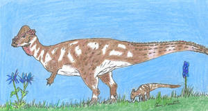 Pachycephalosaur Dad(?) by RajaHarimau98