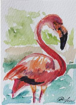 Flamingo ACEO card