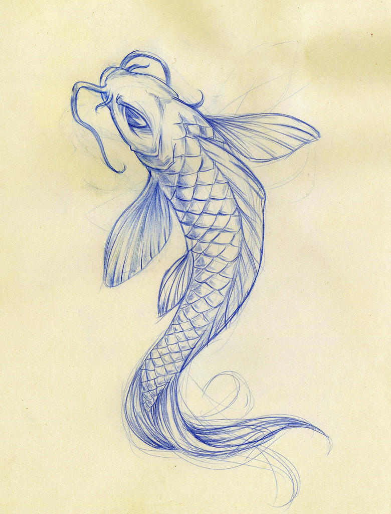 Koi fish sketch by daeo on deviantart for Koi fish sketch