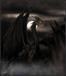Dragon by kozmaty