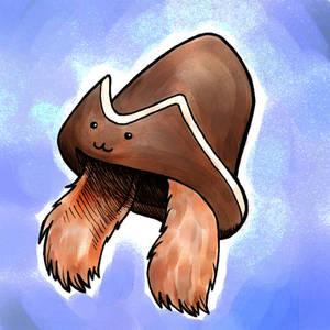 Descole's Hat