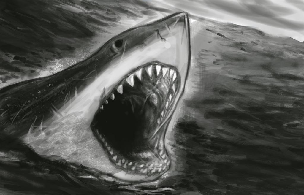 Speedpainting - Shark by IgorChakal