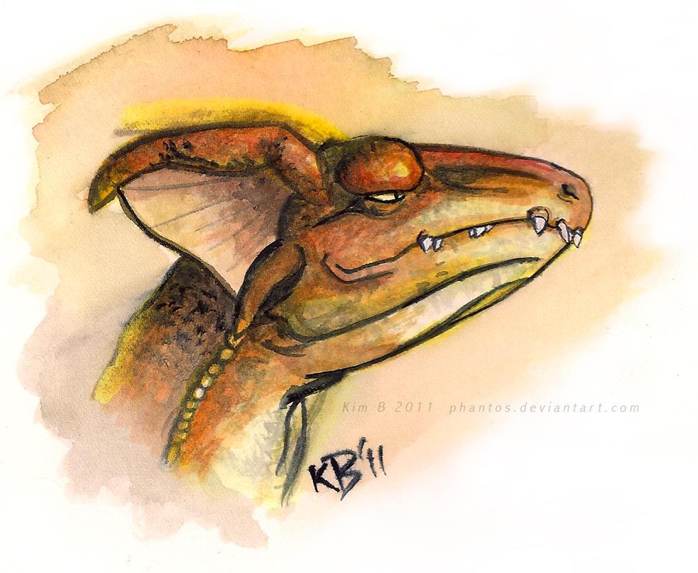 almician dragon head practice by phantos