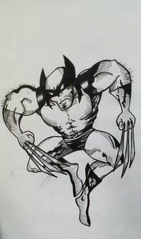 Wolverine jump
