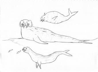 Friends for Odobenus rosmarus by InkGink