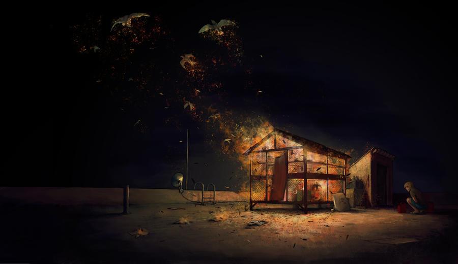 fireworks by begemott