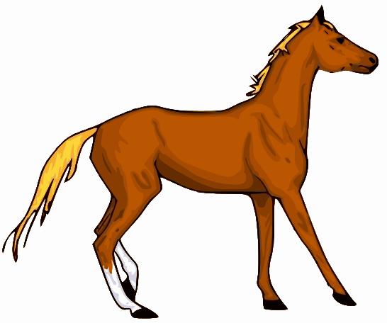 clipart horse - photo #21