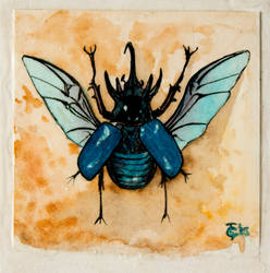 Tiny Blue Atlas Beetle Watercolor by bluebaboon