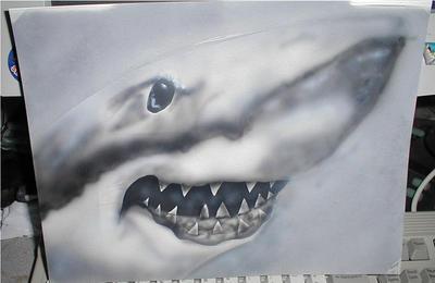 Shark quick paint