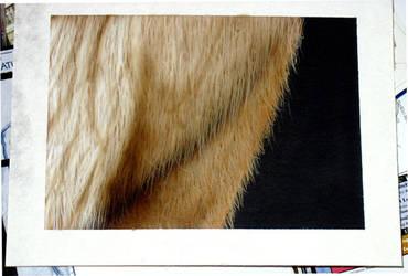Fur test