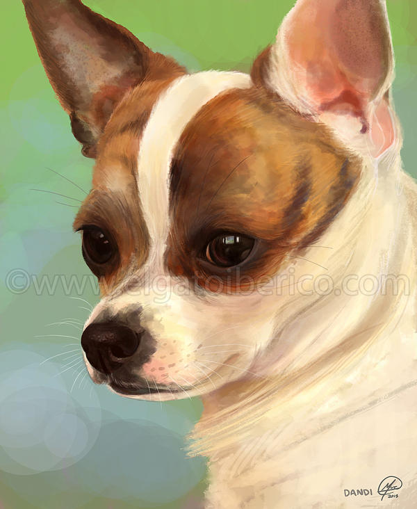 Chihuahua Paint by Gato-Iberico