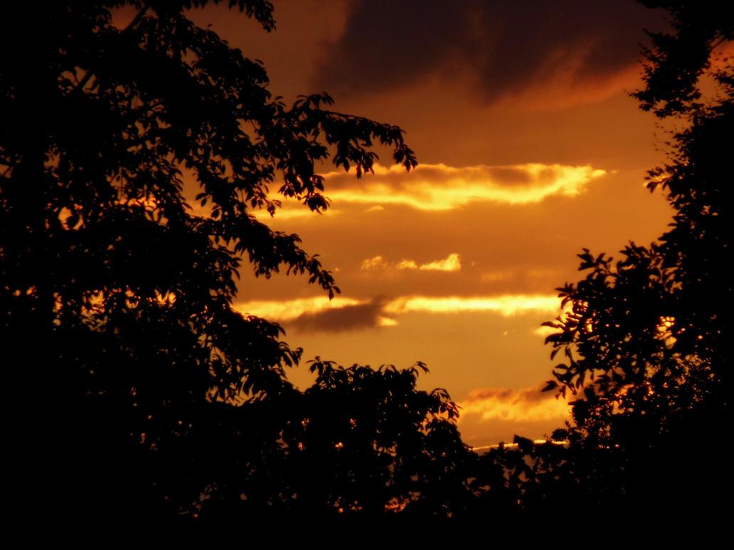 Todays sunrise by Finnyanne