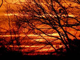 Red sky by Finnyanne