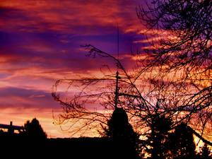 Magic morning by Finnyanne