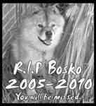 R.I.P. Bosko
