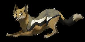 [SeldomSeenSpeciesSunday] Side-Striped Jackal by TheCynicalHound
