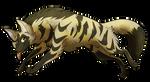 [SeldomSeenSpeciesSunday] Aardwolf