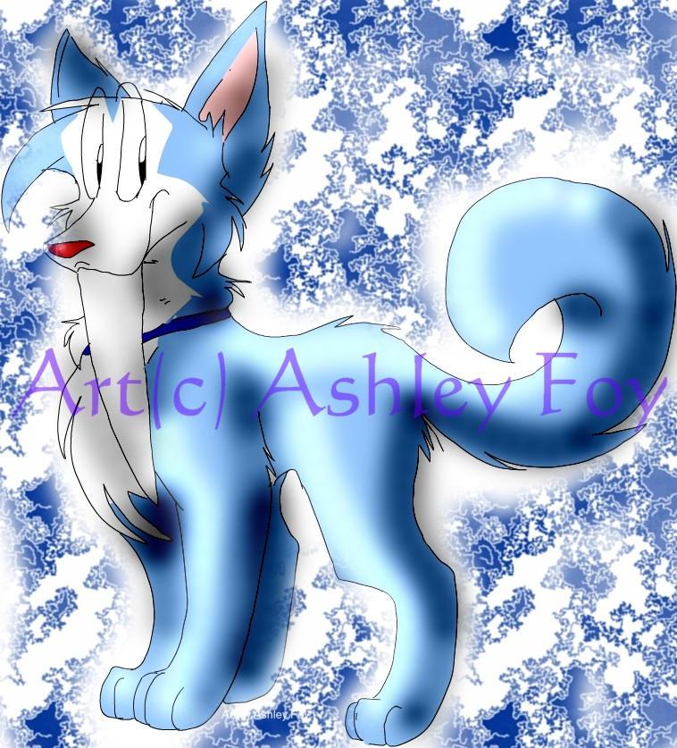 Tusky Husky by xAshleyMx
