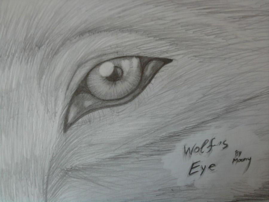 Wolf's eye drawing 2 by MoonyHellWolf on DeviantArt
