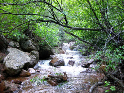 FULL VIEW...Colorado Stream 1 by AngelKast