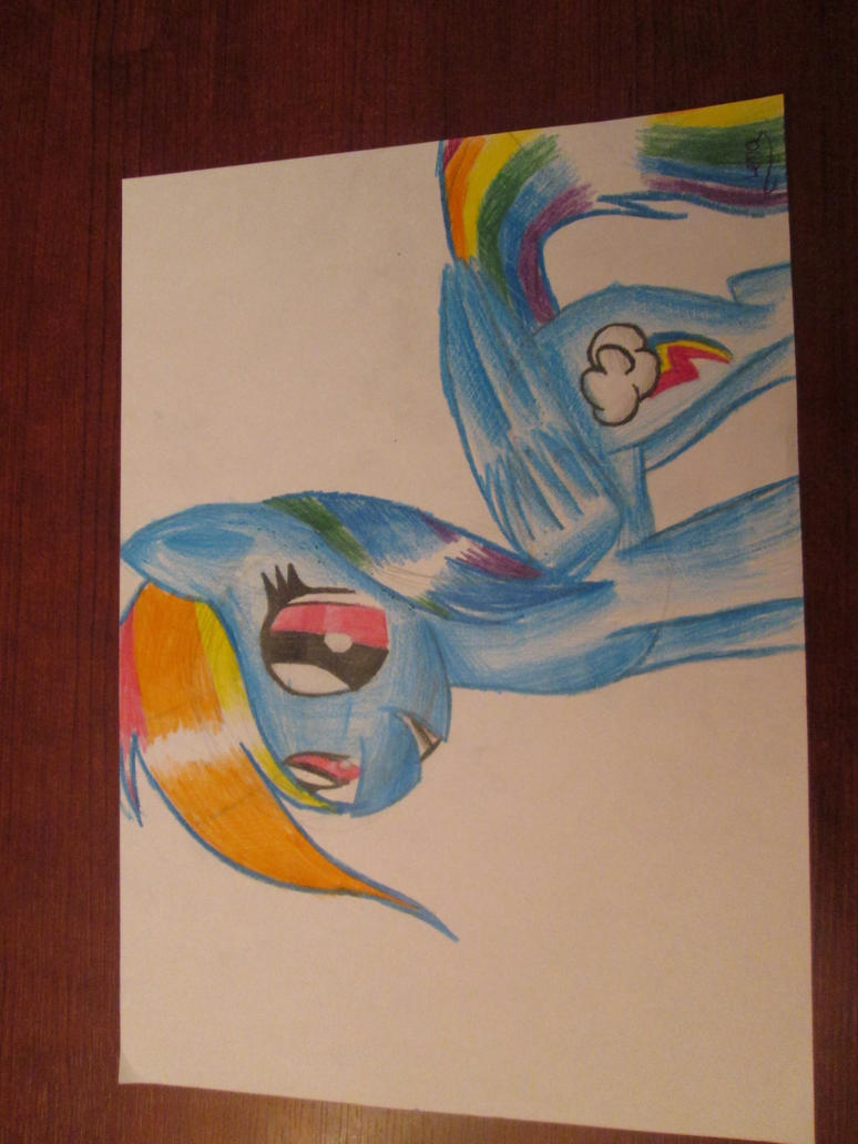 rainbow_dash_by_paintie-d7leq1h.jpg