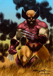 Wolverine In The Prairie By Ardian Syaf Colors by alxelder