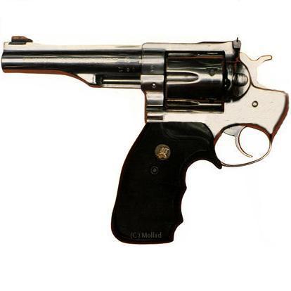 suicide gun
