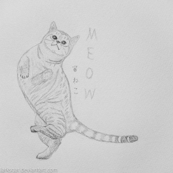 Cat Posing Sketch by larksgar