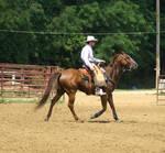 cowboy shooting33