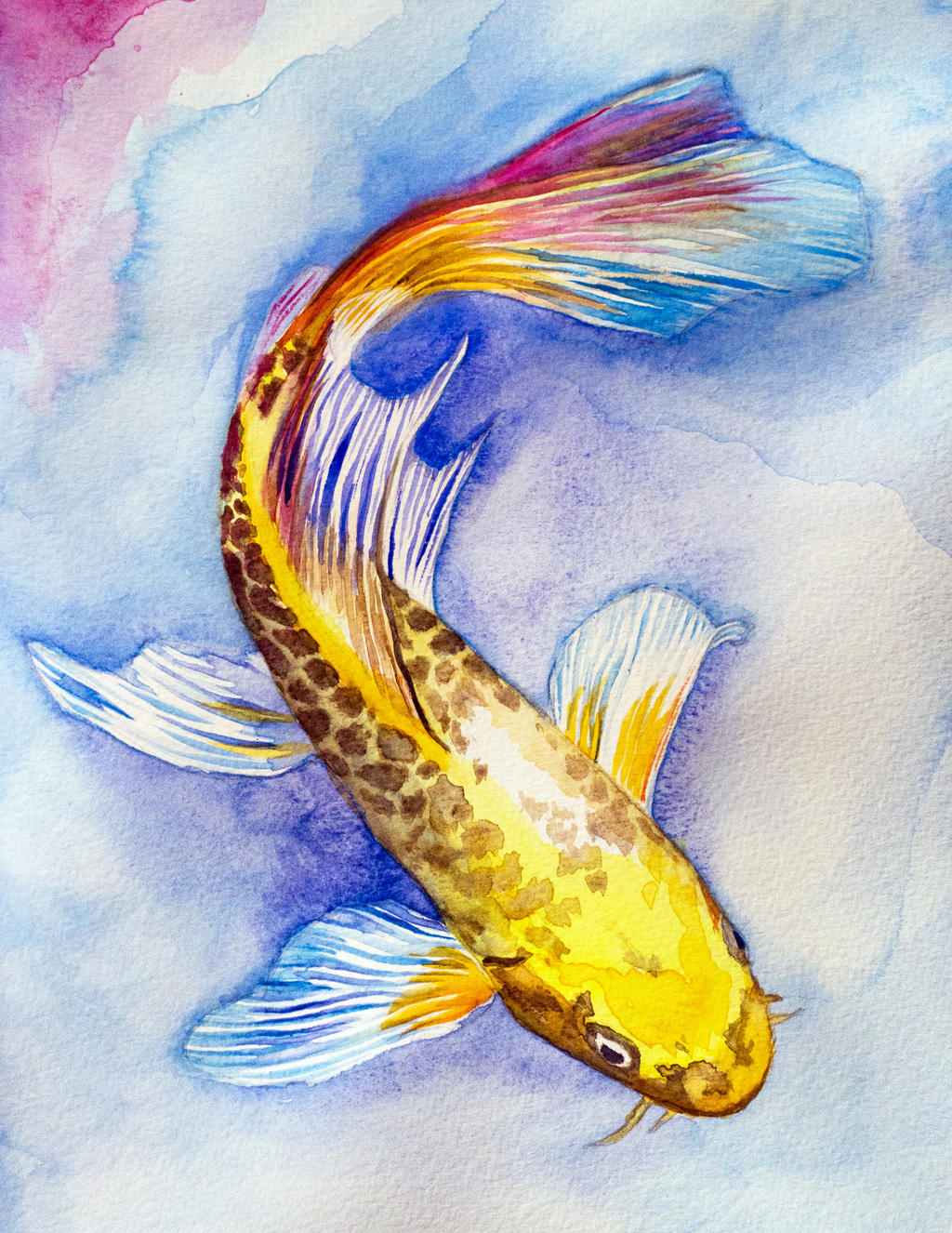 Butterfy Koi Watercolor by goldfish-account