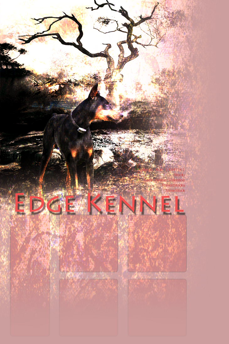 Edge Kennel Layout by Beetlebug16