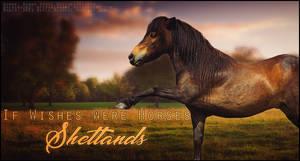 IWWH Shetlands