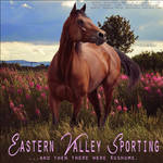 Eastern alley Sporting