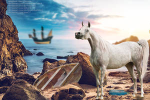 Arabian Sea Layout by BirdWingStudios