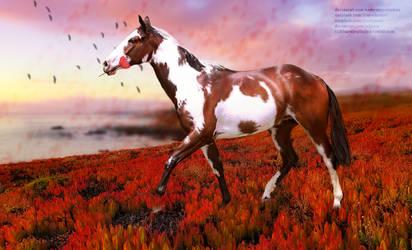 Poppy Horse