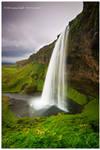 The Finest Falls