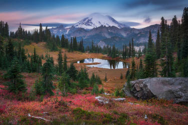 Rainier fall by Dee-T