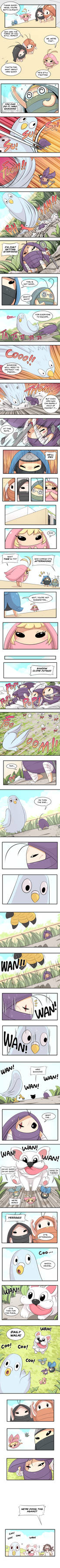 Mr. Pigeon's here (Part 4)