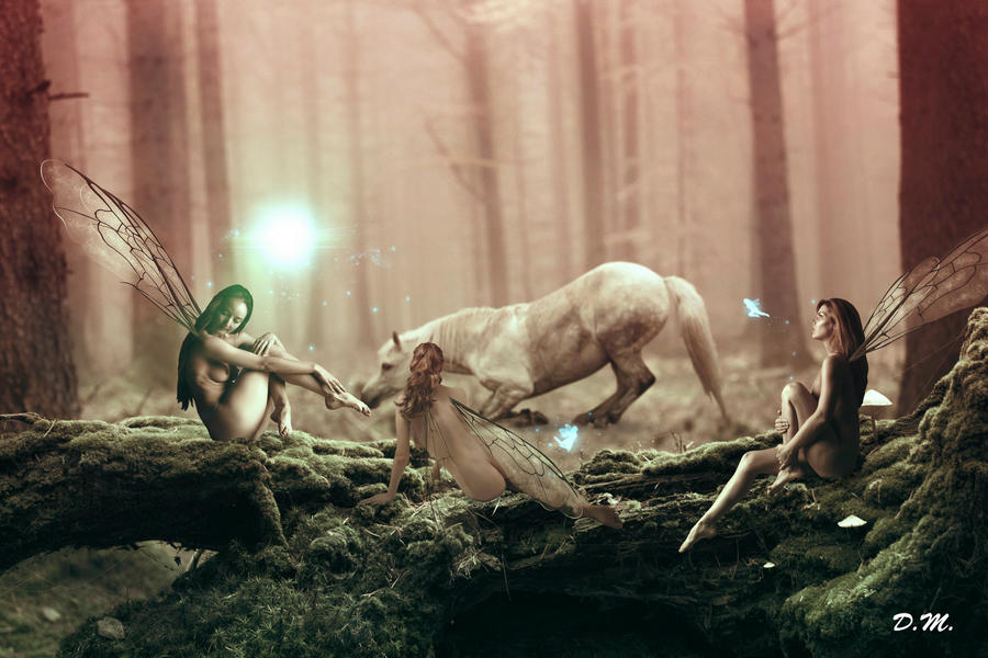 Celtic Music  Fairy Forest