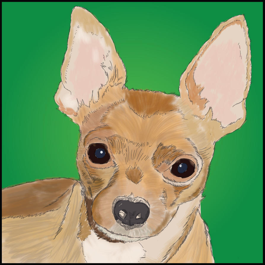 Chihuahua Sketch by mecatronx
