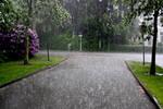 The Rainy Street
