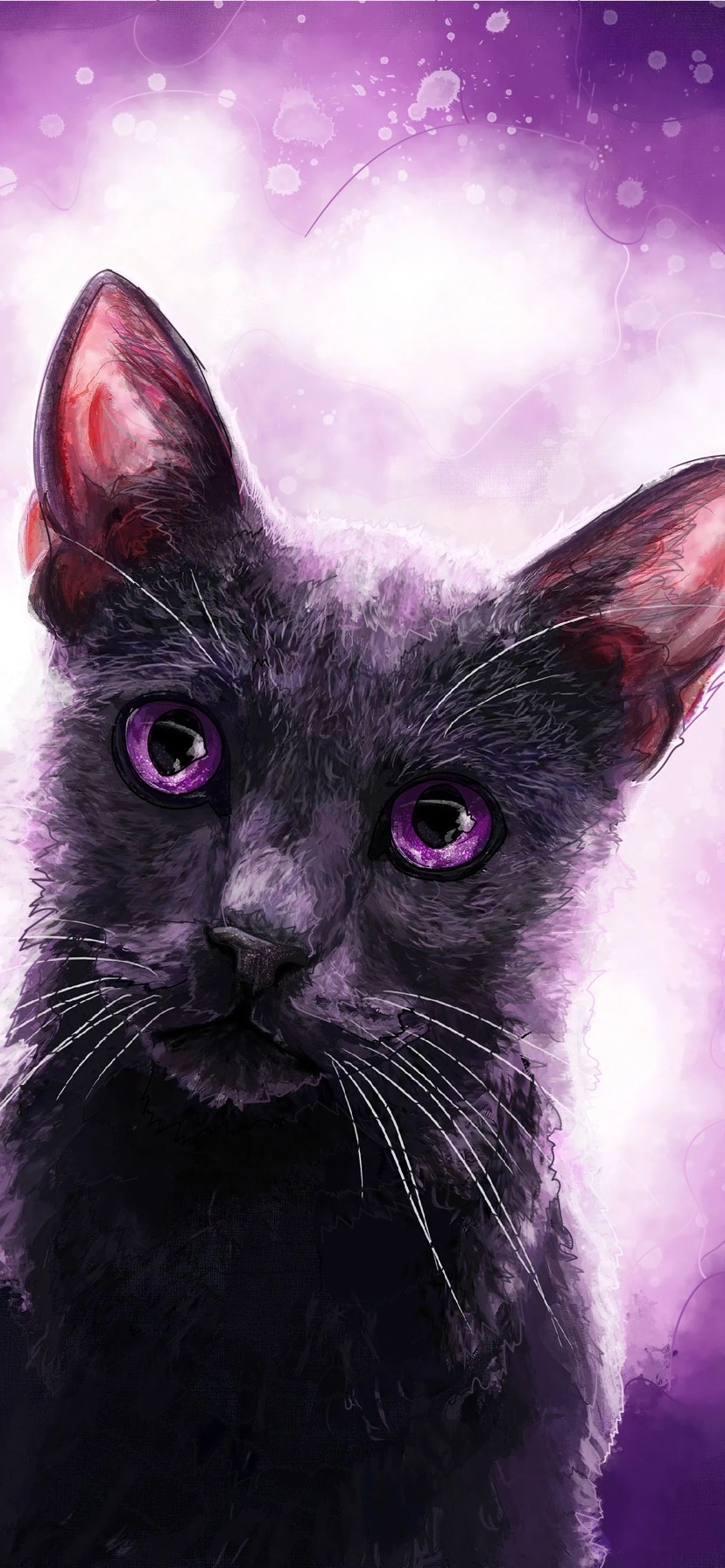 Cat with purple eyes