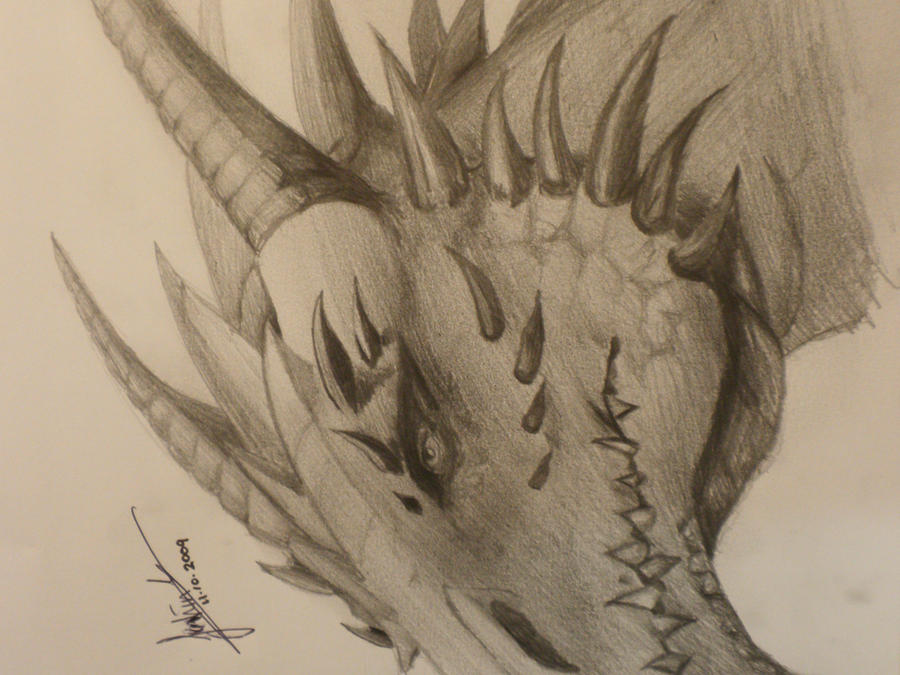 Dragon Head by JayCloud on DeviantArt