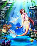 _-+Angelfish+-_